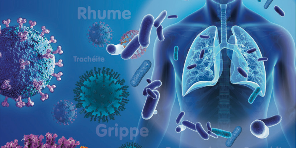 Améliorer son microbiote intestinal